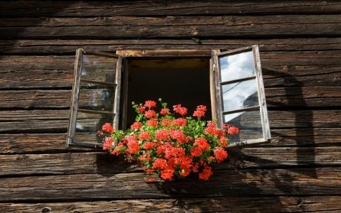 夏天别这样开窗通风,开窗关窗,都有时间讲究,那么到底怎么做才是正确的呢?