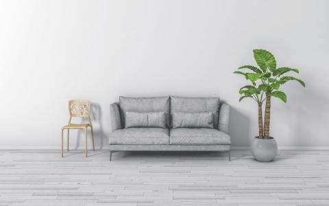 室内除甲醛行业被误解,都存在哪些误区?