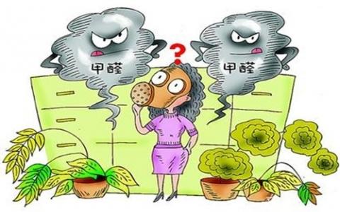 室内除甲醛最有效的方法是什么?