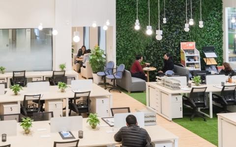 办公室环境安全么?办公室甲醛超标怎么办?关心办公室环境